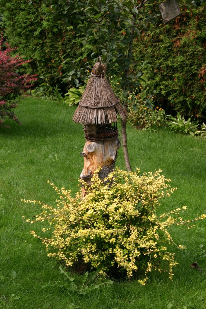 Jak zrobić porządek w ogrodzie